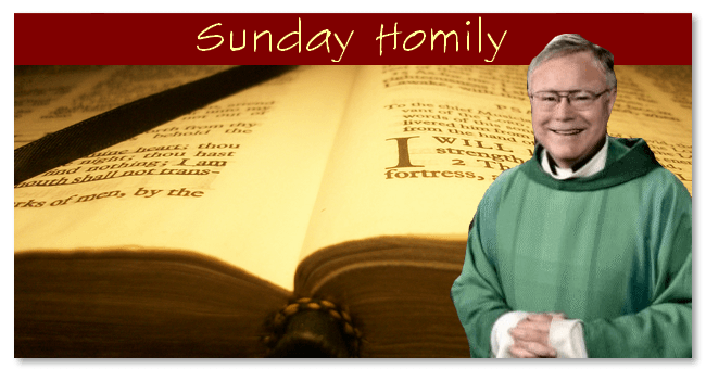 imgSunday Homily